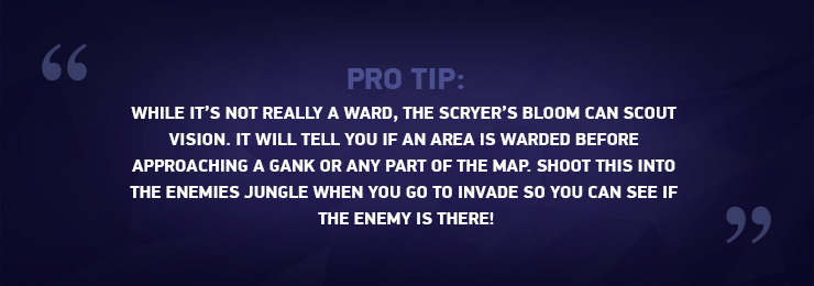 Vision Control: Step By Step Warding Guide for LoL - Mobalytics